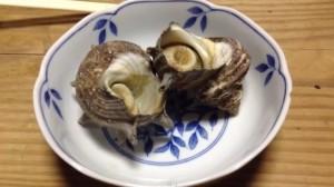 0001.湘南名物魚身亭5