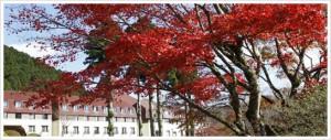 0016.芦ノ湖温泉山のホテル