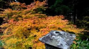 0047.山形県 立石寺(山寺)3