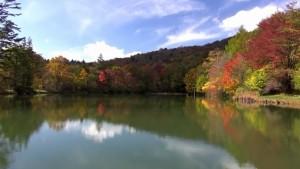 0134.愛知県 茶臼山高原3