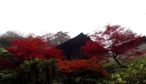 0047.山形県 立石寺(山寺)2