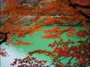 0097.神奈川県 丹沢湖3