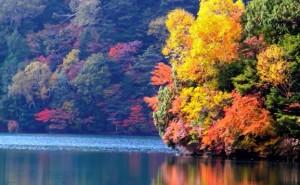 0085.栃木県 日光湯ノ湖3