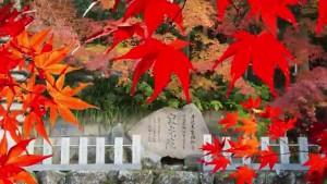 0133.愛知県 寂光院2