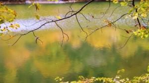0015.青森県 十二湖2