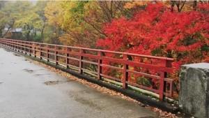 0062.福島県 雪割橋・雪割渓谷2