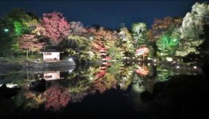 0136.愛知県 白鳥庭園2