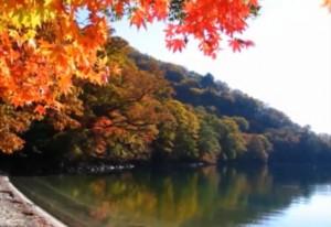 0084.栃木県 日光中禅寺湖1