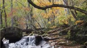 0142.岐阜県 県立自然公園宇津江四十八滝1