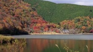 0166.静岡県 田貫湖キャンプ場1