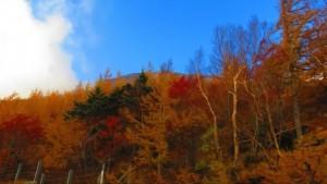 0170.静岡県 富士山スカイライン3