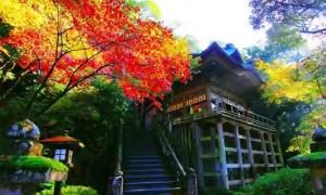 0172.石川県 那谷寺(なたでら)3