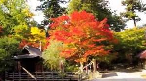 0223.島根県 清水寺(きよみずでら)1