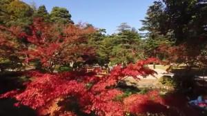 0159.新潟県 弥彦公園もみじ谷3