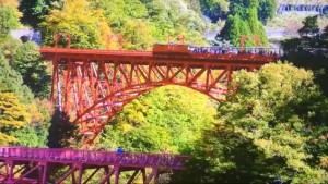 0174.富山県 黒部峡谷トロッコ電車 3
