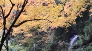 0152.岐阜県 養老公園4