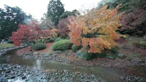 0197.香川県 特別名勝 栗林公園2