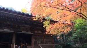 0230.奈良県 室生寺4