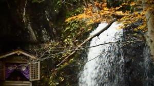 0142.岐阜県 県立自然公園宇津江四十八滝3