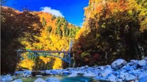 0174.富山県 黒部峡谷トロッコ電車 2