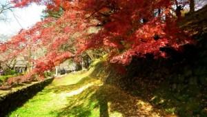0234.福岡県 秋月城跡2