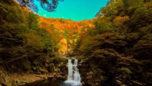 0193.広島県 三段峡 4