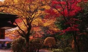 0172.石川県 那谷寺(なたでら)4