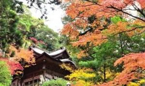 0172.石川県 那谷寺(なたでら)2
