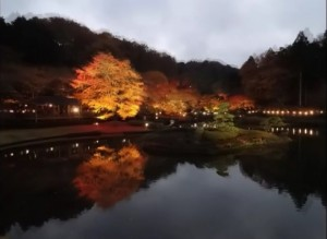 0162.静岡県 修善寺・虹の郷3