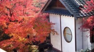 0234.福岡県 秋月城跡4