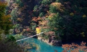0164.静岡県 寸又峡渓谷2