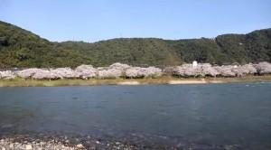 0088.山口県 錦帯橋1