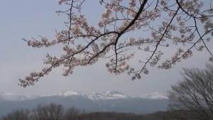 0026.福島県 霞ケ城公園2