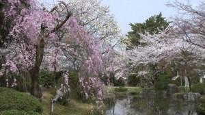 0040.新潟県 村松公園2