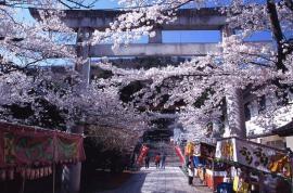 0107.福島県 信夫山公園1