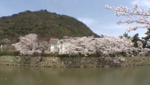 0080.鳥取県 鳥取城跡・久松公園1