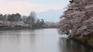 0013.岩手県 高松公園3