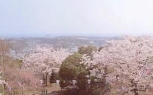 0007.神奈川県 衣笠山公園1