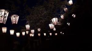0046.福井県 霞ケ城公園(丸岡城)3