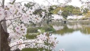 0093.佐賀県 小城公園3
