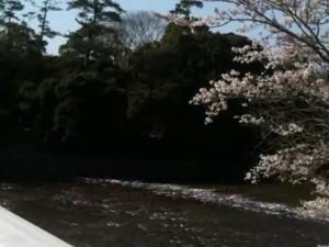 0146.三重県 伊勢神宮2