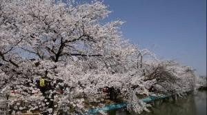 0048.長野県 臥竜公園1