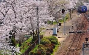 0067.京都府 笠置山自然公園3