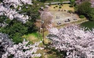 0072.兵庫県 明石公園3