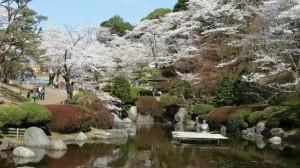 0117.栃木県 八幡山公園2