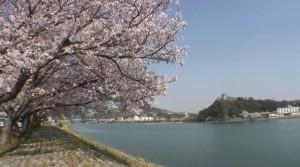 0145.愛知県 国宝犬山城・木曽川河畔3