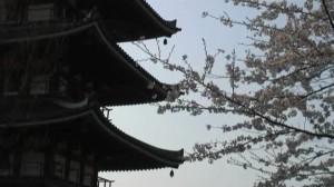 0112.福島県 安達ヶ原公園2