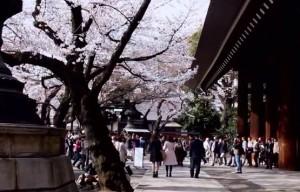 0123.東京都 靖国神社3