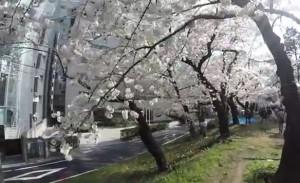 0122.東京都 外濠公園3
