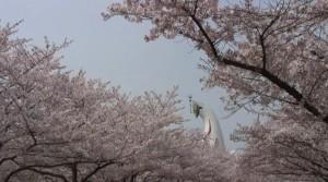 0070.大阪府 万博記念公園1
